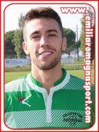 Nicola Marchionno